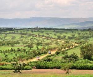 Parco Nazionale di Akagera: Quando andare?