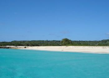 Isola Tortuga
