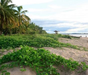 Guiana francese