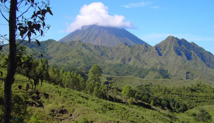 Timor: Volcanic cone hidden in cloud near Bajawa island of Flores West Timor Indonesia.