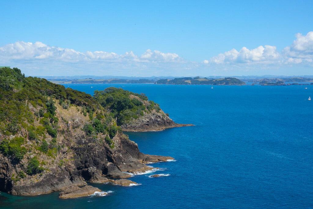 dating agenzia Wellington NZdatazione relativa quale strato di roccia formata prime risposte