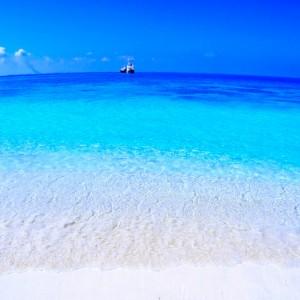 Maldive / 120